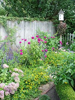 F2-Pollinator-ButterflyGarden-Apr-16-opt