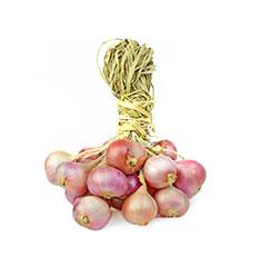 F1-Plants-w-payback--Onion--May-16