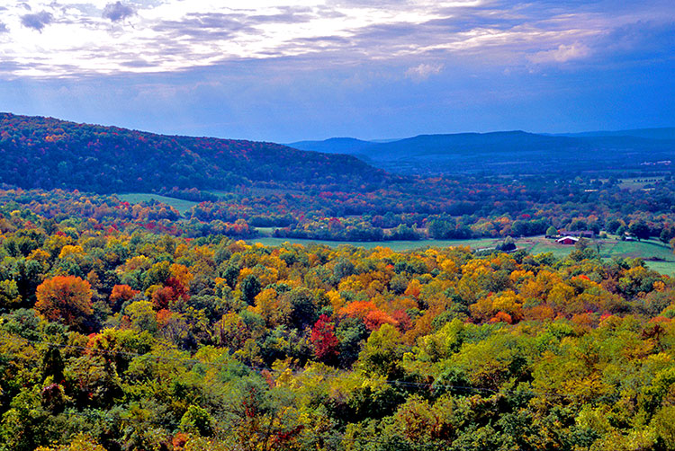 Scenic 7 Byway overlook. Photo courtesy of Arkansas Dept. of Parks and Tourism.
