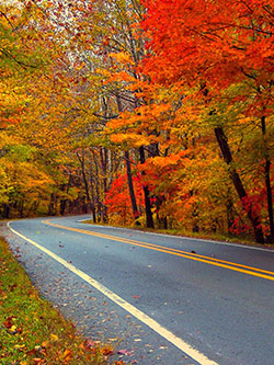 Pig Trail Scenic Byway. Photo by Carolyn Wright