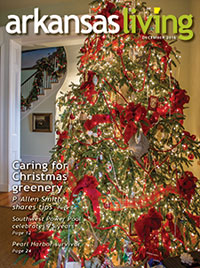 Link to current Arkansas Living magazine