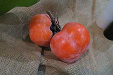 gj-persimmon-ripe-opt