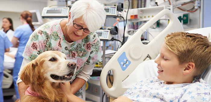 Furry therapists full of heart – therapy dog volunteers offer comfort and joy