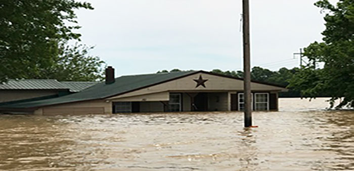 Floodwater deluges Arkansas farms