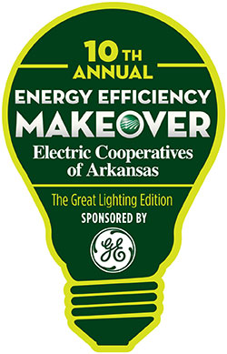 Enter the 10th annual energy efficiency makeover contest for Energy efficiency kits