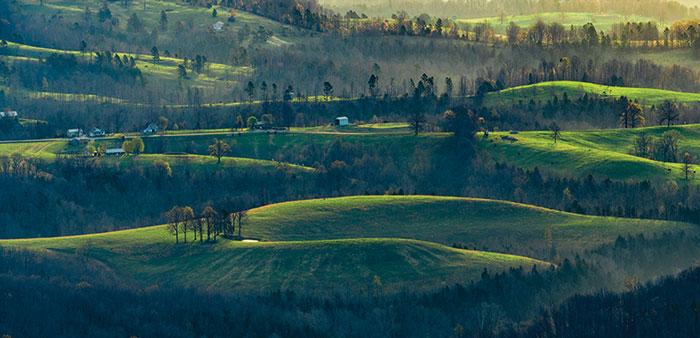 Arkansas beauty