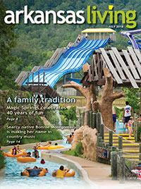 Link to current Arkansas Living magazine