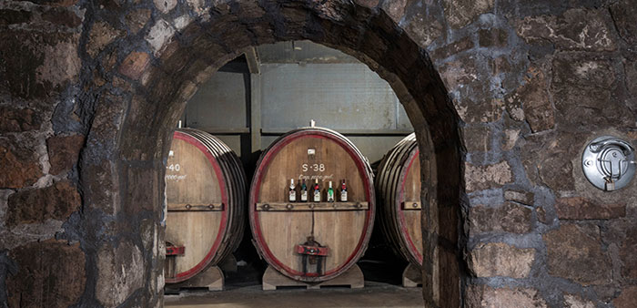 Fruits of the vine -Discover the Arkansas Wine Trail
