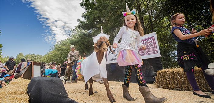 Herds of fans expected for 3rd Annual Arkansas Goat Festival