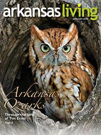 Current issue of Arkansas Living Magazine