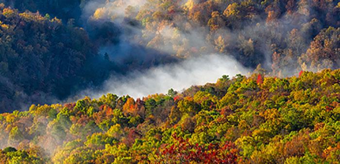 Autumn in Arkansas – Through the lens of Tim Ernst